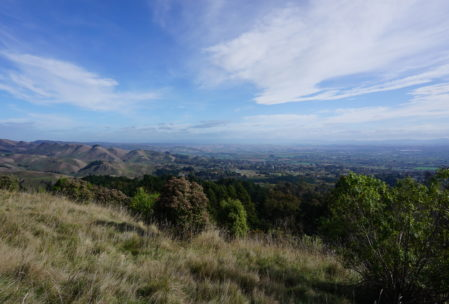 did I mention the scenery? Here's the view of the Hawkes Bay area from partway up Te Mata peak.